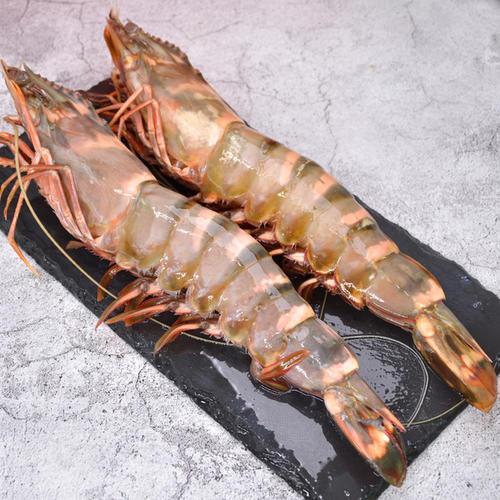 sekinchan-tiger-prawn-bigprawn.shop