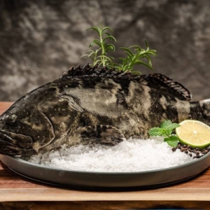 sabah-hybrid-grouper-BigPrawn.shop