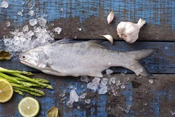 senangin-ma-yau-fish-bigprawn.shop